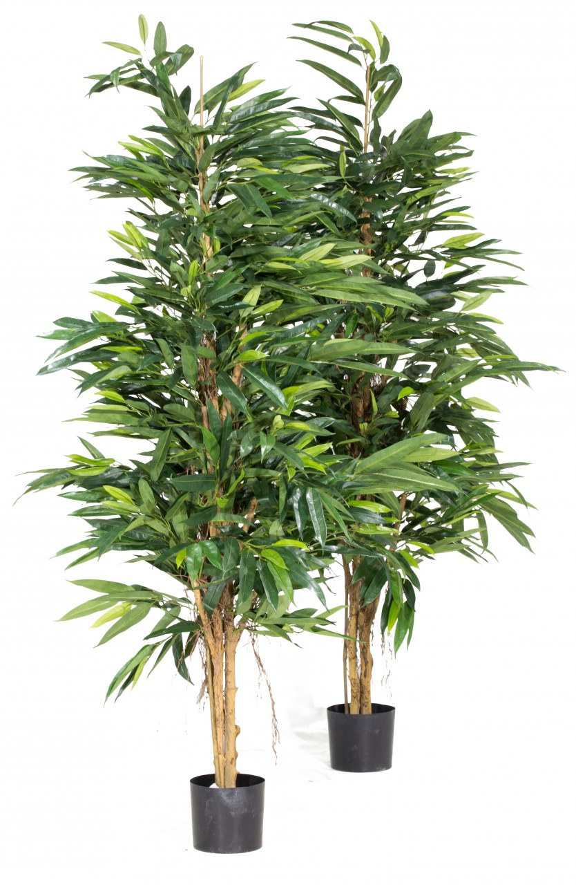 LONGIFOLIA ROYAL NATURAL Kunstpflanze, 150 cm