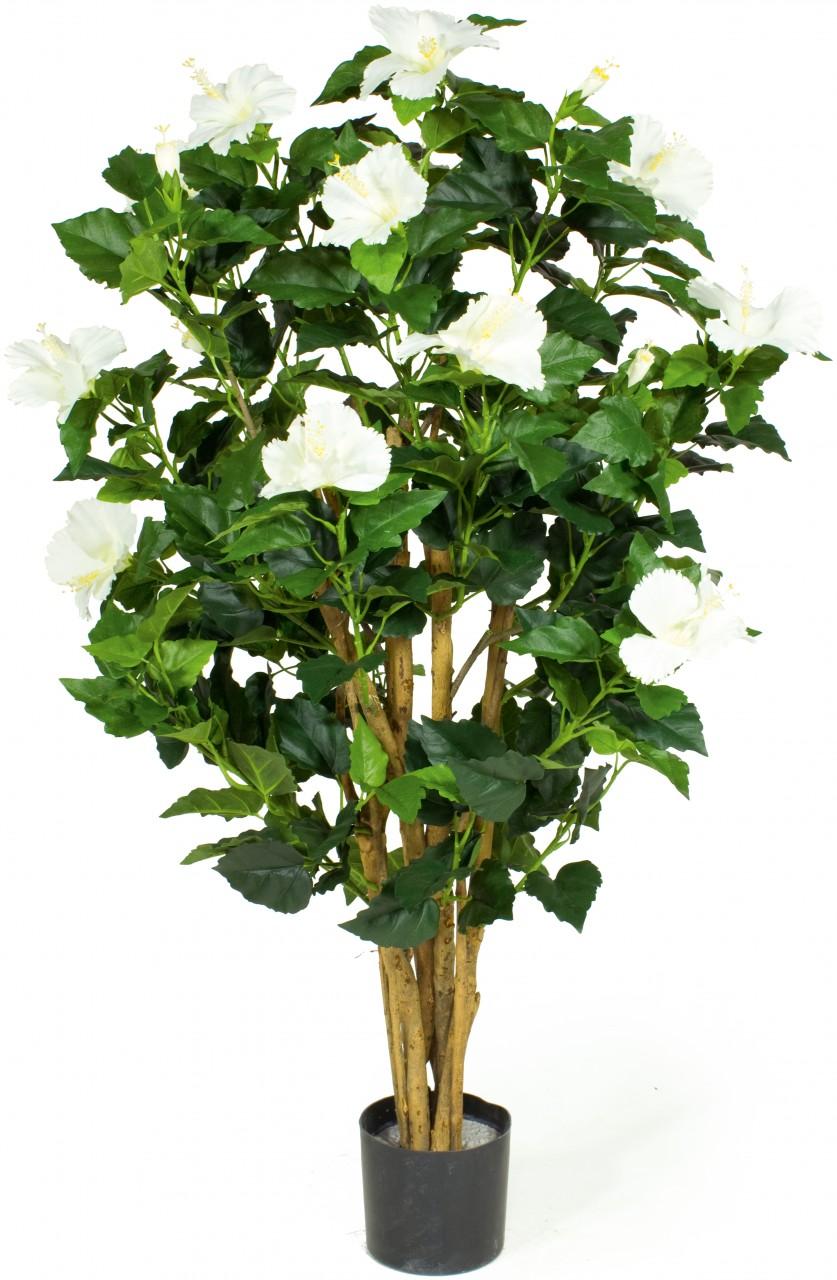 HIBISKUS EXTRA Kunstpflanze, 100 cm, crème